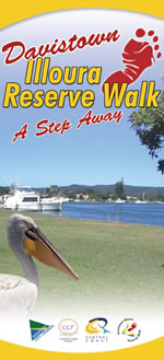 Get the Ferry to join the Illoura Walk. Pick up the Central Coast Ferry Service from Woy Woy Wharf